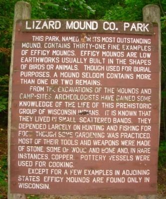 Lizard Mound Co. Park Marker Photo, Click for full size