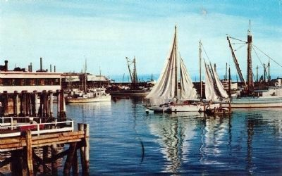 Postcard view of Monterey Harbor (undated) image. Click for full size.