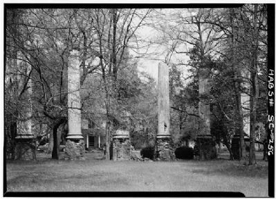 Woodlands and Millwood , Millwood Ruins Photo, Click for full size