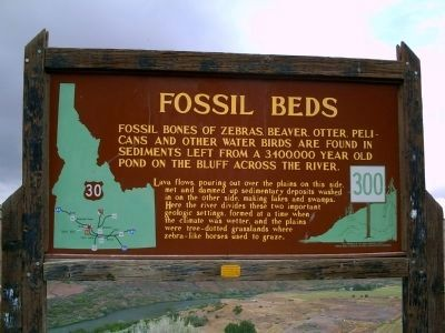 Fossil Beds Marker image. Click for full size.