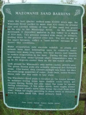 Mazomanie Sand Barrens Marker image. Click for full size.