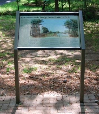 Environmental Change From Forest to Park Marker image. Click for full size.