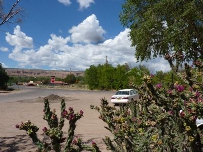 Chimayo Marker - Lies Beyond the Blooming Cholla Cactus image. Click for full size.