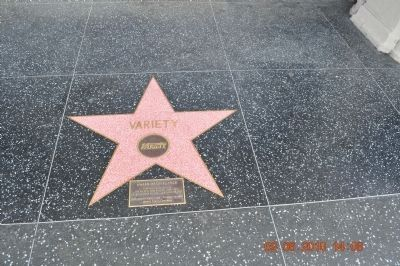 Nearby Award of Excellence Hollywood Star for <i>Variety</i> image. Click for full size.