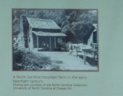 A North Carolina mountain farm in the early twentieth century. image. Click for full size.