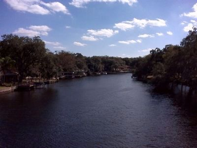 The Hillsborough River image. Click for full size.