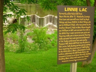 Linnie Lac Marker image. Click for full size.