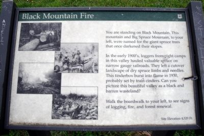 Black Mountain Fire Marker image. Click for full size.