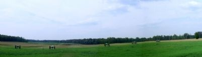 Malvern Hill (facing north) image. Click for full size.