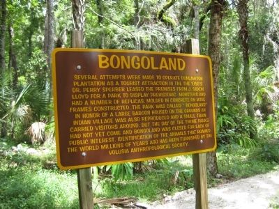 Bongoland Marker image. Click for full size.