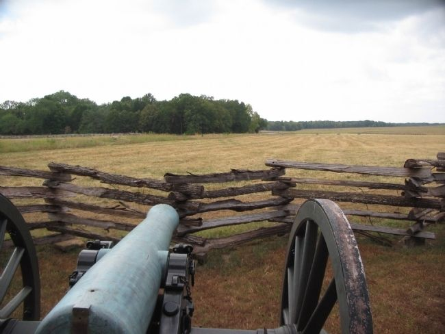 Confederate Gunner's View image. Click for full size.