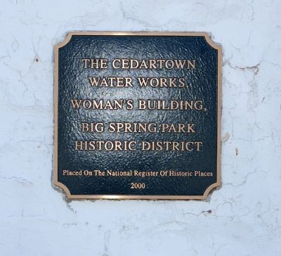 Cedartown Water Works image. Click for full size.