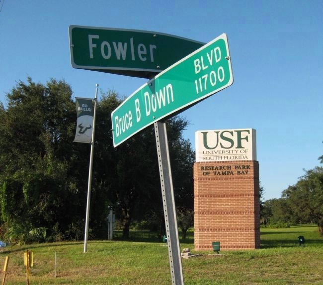 Fowler Ave. and Bruce B. Downs Blvd. image. Click for full size.