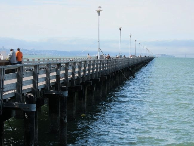 Berkeley Municipal Pier - Looking West from the Foot of the Pier. Photo, Click for full size