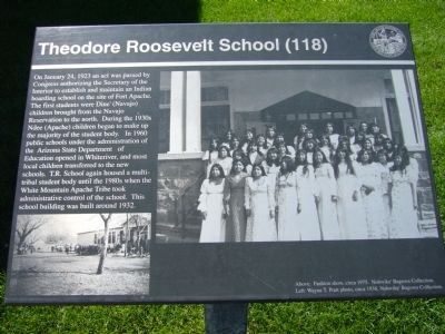 Theodore Roosevelt School (118) Marker image. Click for full size.