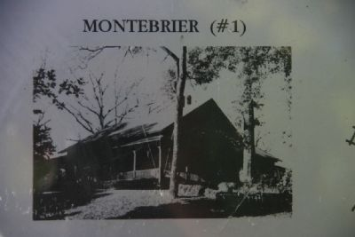 Montebrier image. Click for full size.