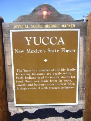 Yucca Marker image. Click for full size.