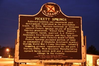 "Pickett Springs / ""The Best Public Resort"" Marker (Side A) image. Click for full size."