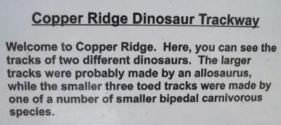 Copper Ridge Dinosaur Trackway Marker image. Click for full size.