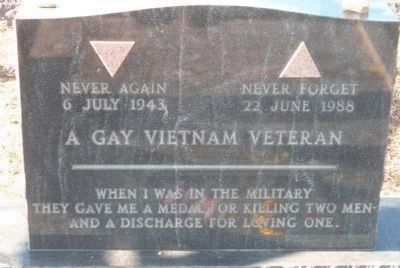 """A Gay Vietnam Veteran"" image. Click for full size."