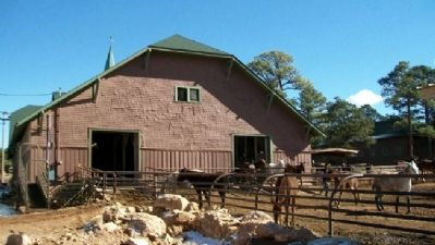 Mules at the Mule Barn image. Click for full size.