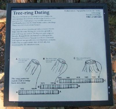 Tree-ring Dating Marker image. Click for full size.