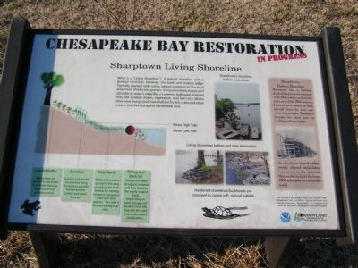 Chesapeake Bay Restoration in Progress Marker image. Click for full size.