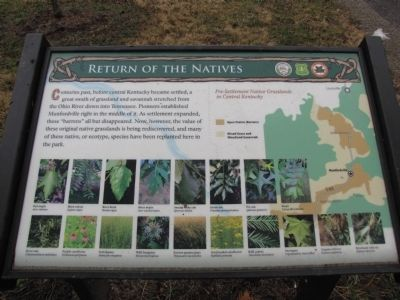 Return of the Natives Marker image. Click for full size.