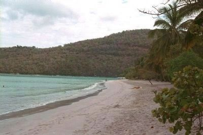Magens Bay Beach, looking northeast Photo, Click for full size