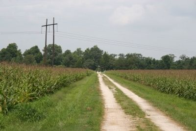 Road to McClary Cemetery image. Click for full size.