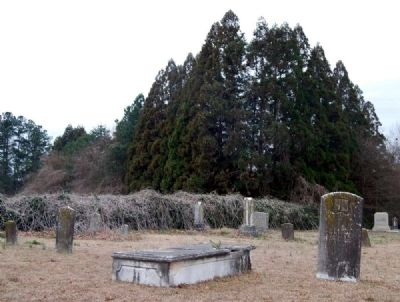 Honea Path Cemetery -<br>Older Section<br>Along South Boundary image. Click for full size.