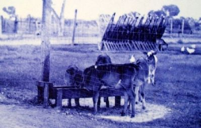 Photo on Corrals and Tack House Marker image. Click for full size.