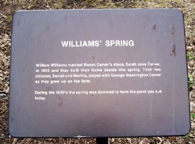 Williams' Spring Marker image. Click for full size.