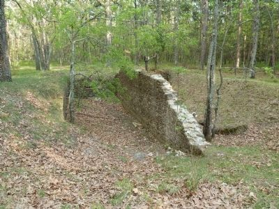 Remnants of Wharton-era barn in the forrest. image. Click for full size.