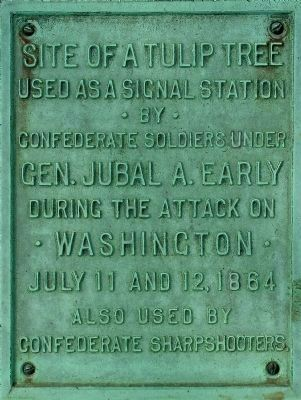 Tulip Tree Marker -- Plaque image. Click for full size.