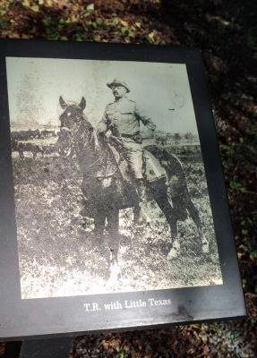 Theodore Roosevelt Riding Little Texas image. Click for full size.