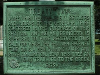 Treaty Oak Marker Photo, Click for full size