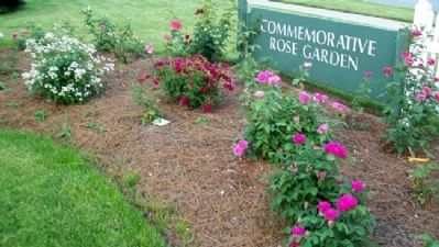 Commemorative Rose Garden image. Click for full size.