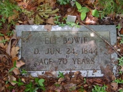 Eli Bowie Tombstone<br>Old Bowie Cemetery image. Click for full size.