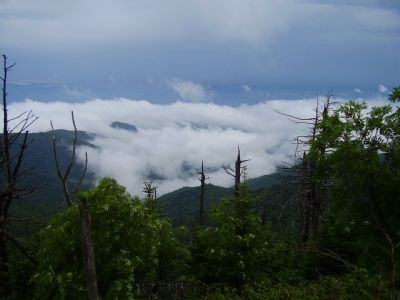 The Top of the Smokies Photo, Click for full size