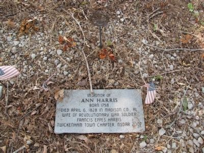 In honor of Ann Harris image. Click for full size.