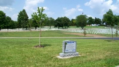 Combat Infantrymen Monument image. Click for full size.
