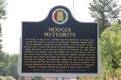 Hodges Meteorite Marker Photo, Click for full size