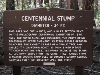 The Centennial Stump Marker image. Click for full size.