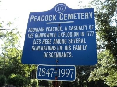 Peacock Cemetery Marker image. Click for full size.