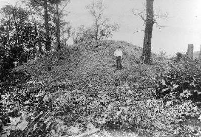 McKees Rocks Mound before excavation image. Click for full size.