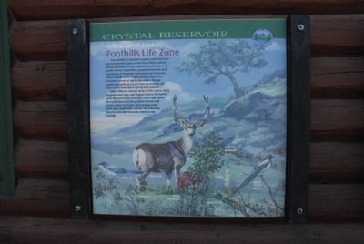 Take a Closer Look...Foothills Life Zone Marker image. Click for full size.