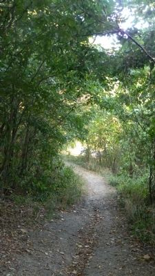 Fort Mahan Park hiking trail - view downhill toward the Fort Mahan marker and Benning Rd. image. Click for full size.