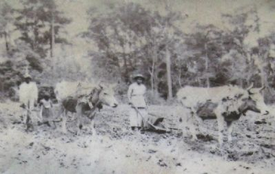 Marker close-up: Farming photo image. Click for full size.