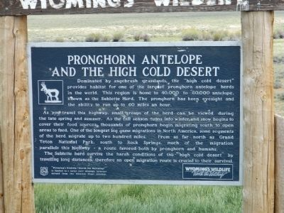 Pronghorn Antelope and the High Cold Desert Marker image. Click for full size.